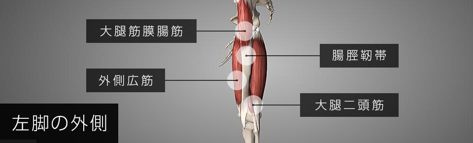 腸脛靭帯と外側広筋と大腿二頭筋は癒着しやすい