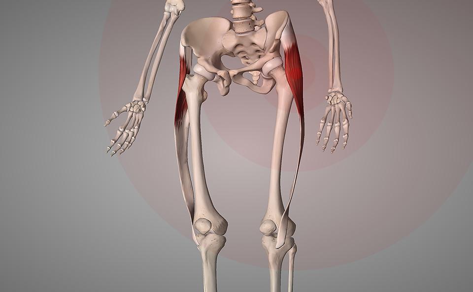 太ももの外側の筋肉が硬くなりやすくなる原因