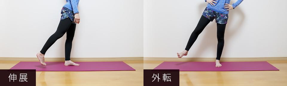大臀筋 = 股関節を伸ばす・中小臀筋 = 股関節を外側に開く