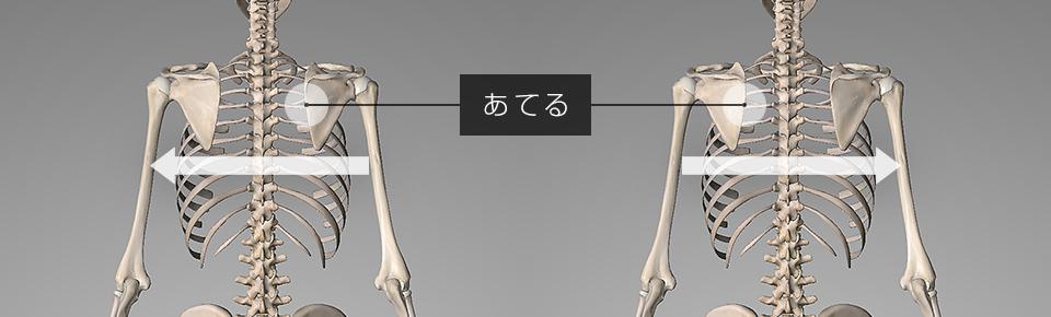 左に揺れる時は右の肩甲骨・右に揺れる時は左の肩甲骨にストレッチポールをあてる