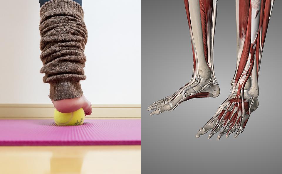 テニスボールで効果的に足裏をほぐすために意識する2つのこと