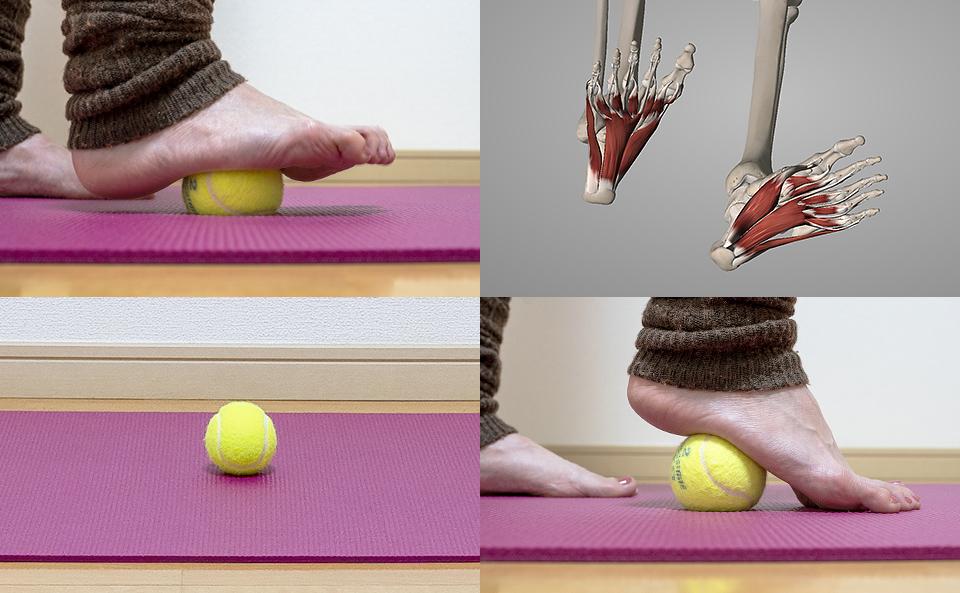 テニスボールで足裏をほぐす方法