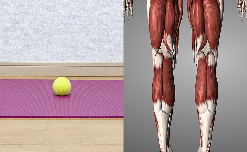 テニスボールで膝裏をマッサージするメリット