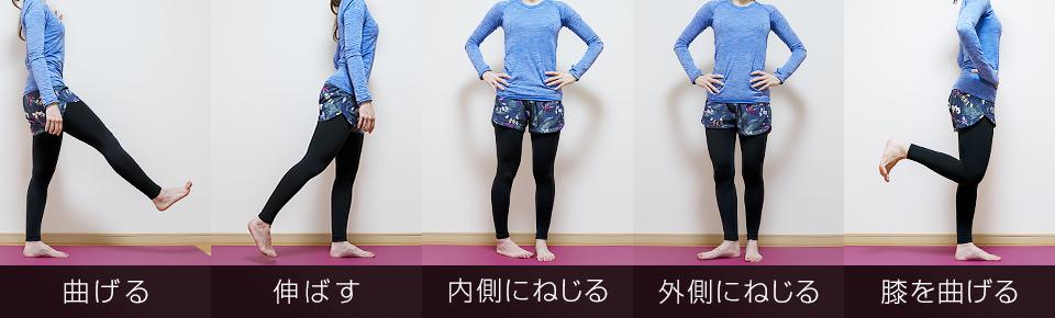 股関節を曲げる・伸ばす・内側にねじる・外側にねじる・膝を曲げる