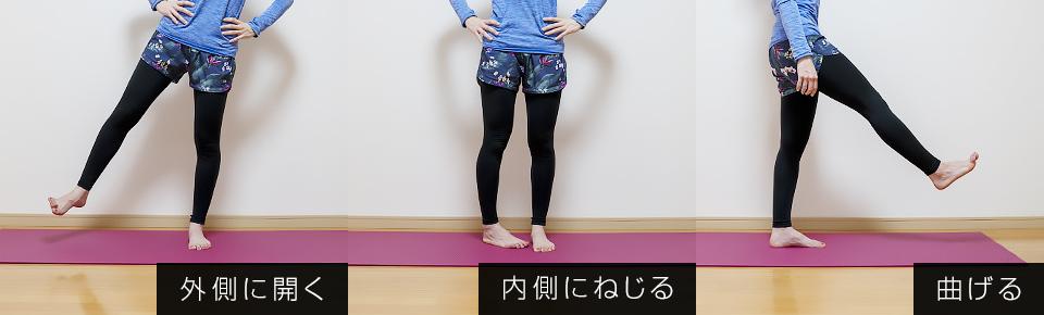 大腿筋膜張筋 = 股関節外側に開く・内側にねじる・曲げる
