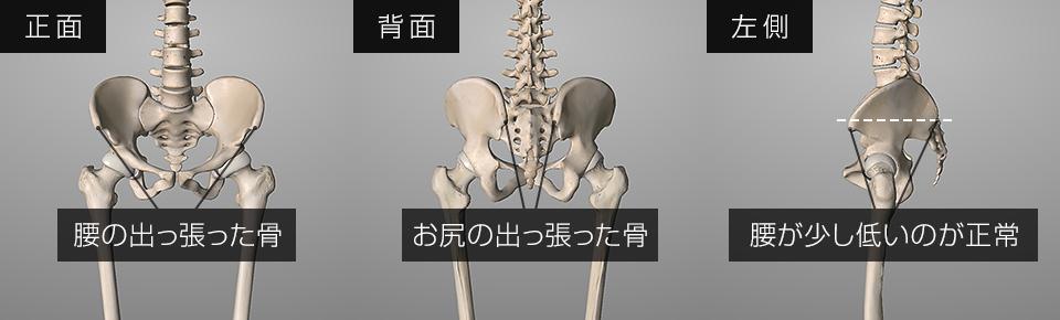 骨盤後傾の確認方法・腰の出っ張りとおしりの出っ張りの位置