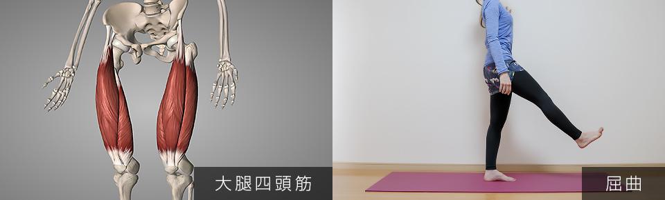 股関節のストレッチ 大腿四頭筋