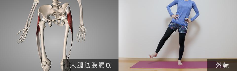 股関節のストレッチ 大腿筋膜腸筋