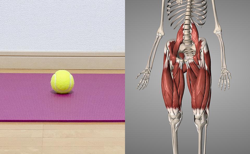 テニスボールで股関節をマッサージとは?