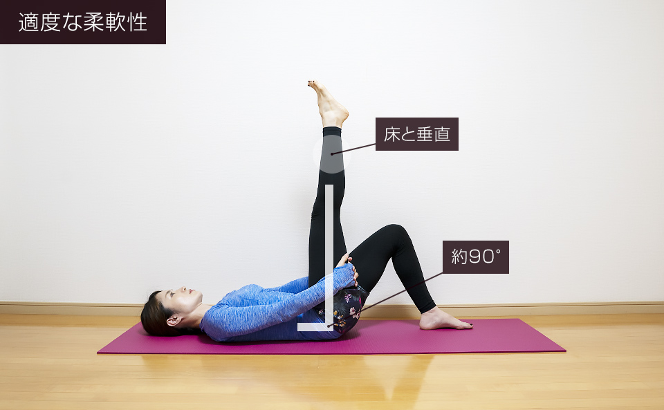 もも裏の筋肉の柔軟度チェック「適正な柔軟度」