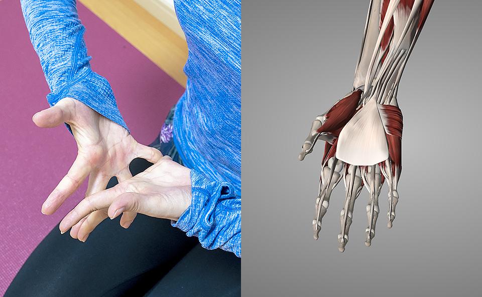 手の指・手のひらのストレッチを行うメリット
