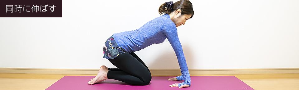 手の平を床につける肘のストレッチ「片腕ずつ伸ばす」