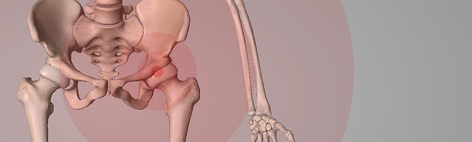 立ったまま「股関節周り」のストレッチ