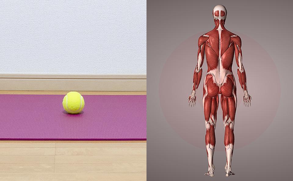 テニスボールでマッサージする際に注意する3つのこと