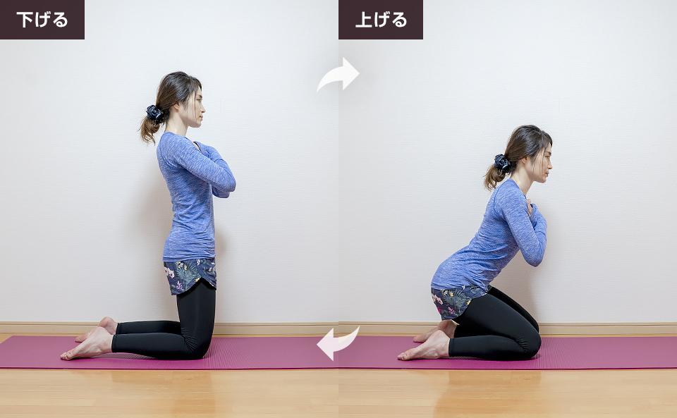 膝立ちになり上げ下げする筋トレ:両脚一緒