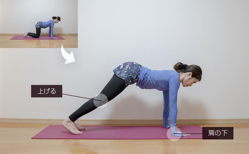 四つん這いでお尻を上げ下げする筋トレ:両脚