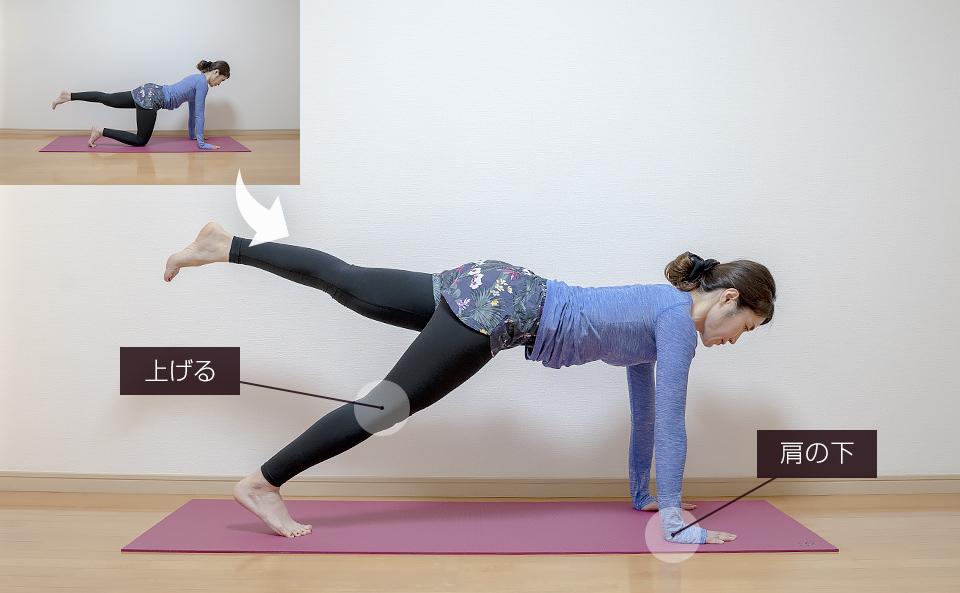四つん這いでお尻を上げ下げする筋トレ:片脚づつ