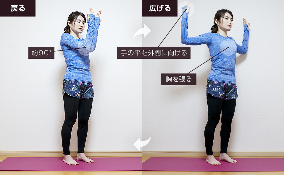 胸の筋トレ前の準備運動「バタフライ」