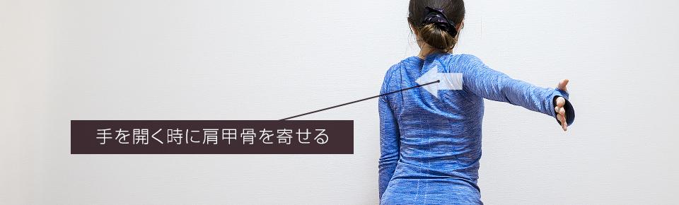 ベンドオーバーワンハンド・スキャプラローテーションの肩甲骨の動き