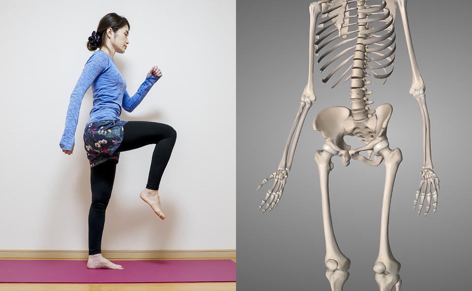 股関節の筋トレ方法の紹介
