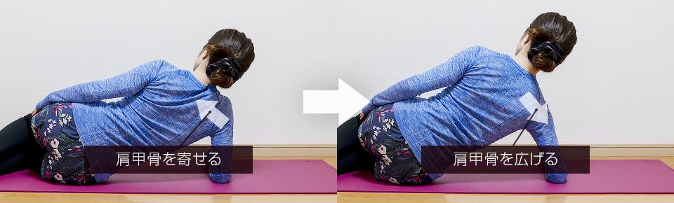ひじで押し上げる肩甲骨の筋トレの肩甲骨の動き