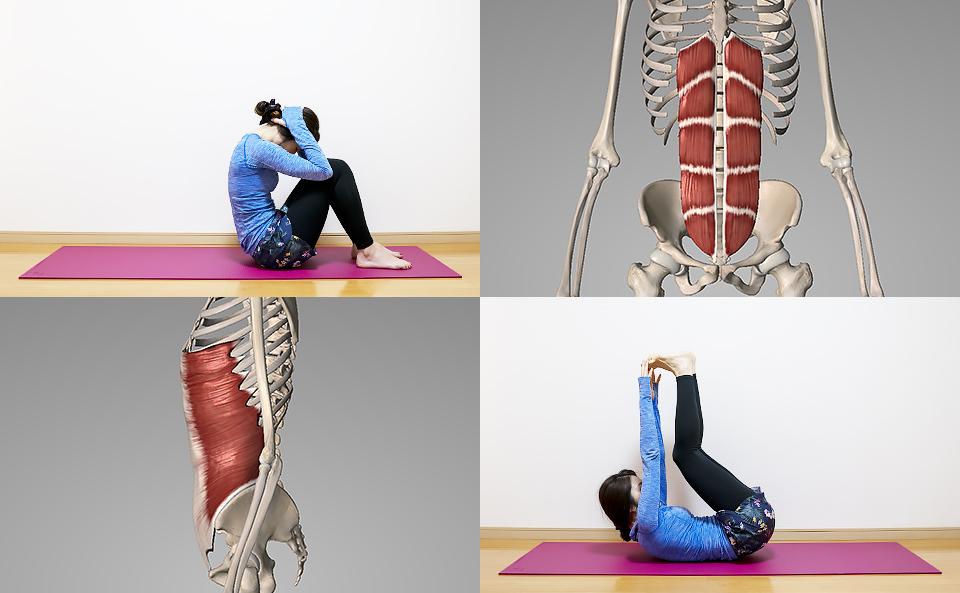 ウエストを引き締める・メリハリのあるシックスパックを作る腹筋の筋トレ方法の紹介