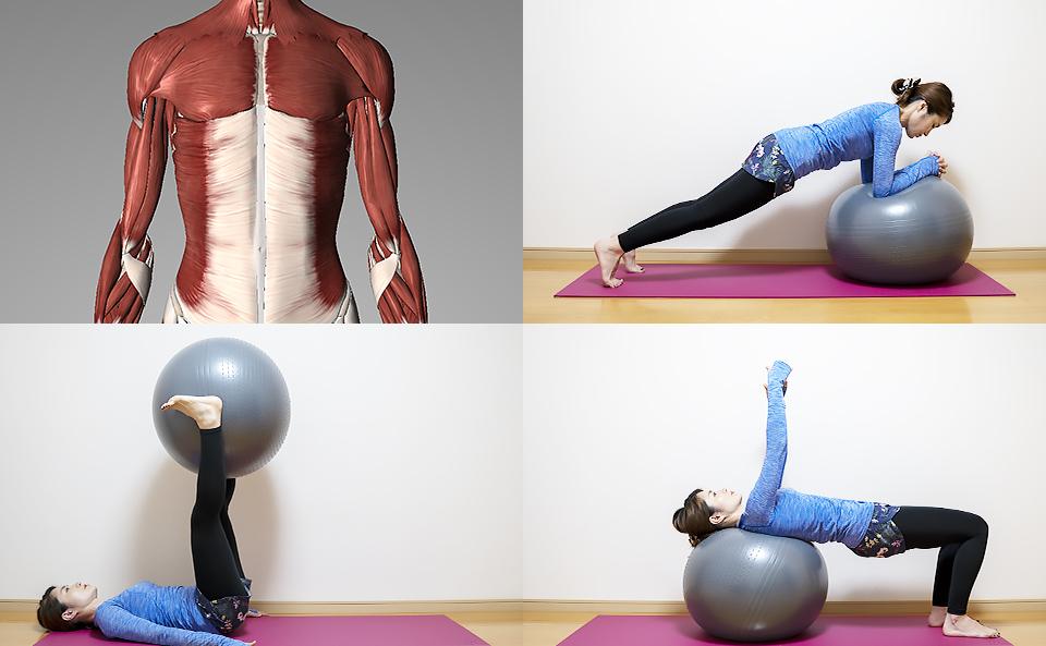 バランスボールで体幹のトレーニング方法を27種目紹介